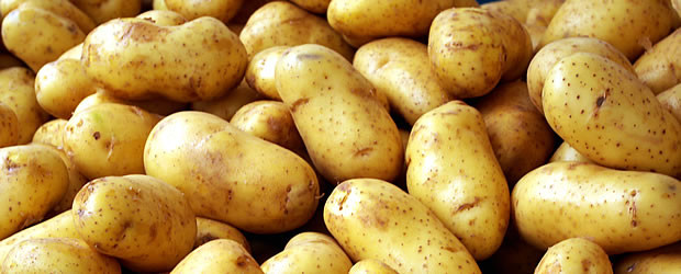 Image result for potatoes